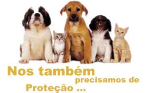 Declaracao-Universal-dos-Direitos-dos-Animais-UNESCO-27-01-1978