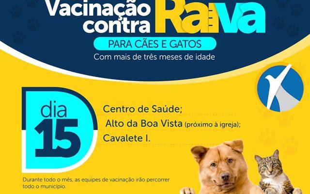 Secretaria de Saúde de Araripina inicia campanha de vacinação contra a raiva para cães e gatos